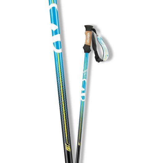 Горнолыжные палки Salomon BBR 8 (2013)